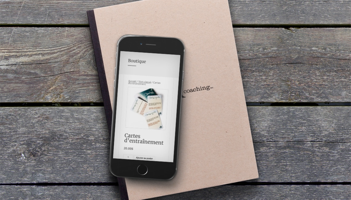 ajout e-commerce wordpress