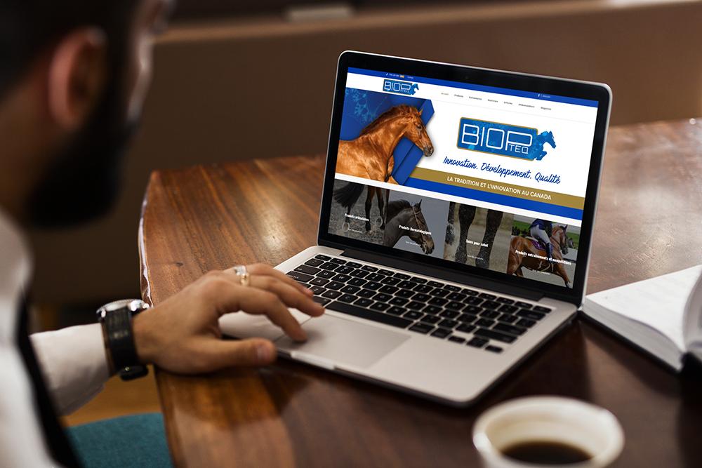 site web équestre