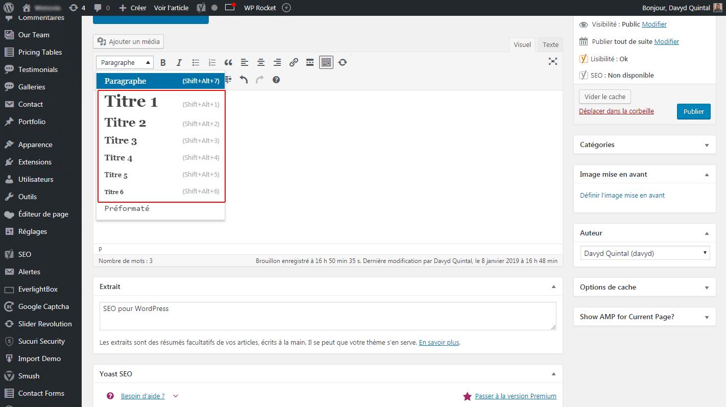 Optimisation d'un article sur WordPress pour un meilleur positionnement Google.